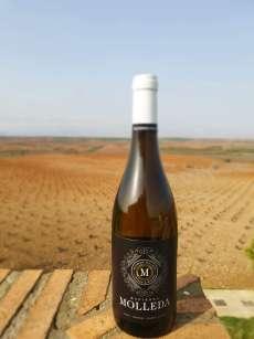 Wino białe Hacienda Molleda Blanco Garnacha