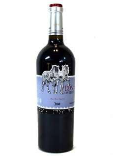 Wino czerwone Dos de Mayo